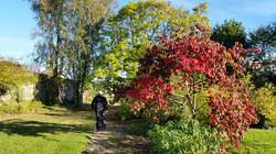 Promenade d'automne ...
