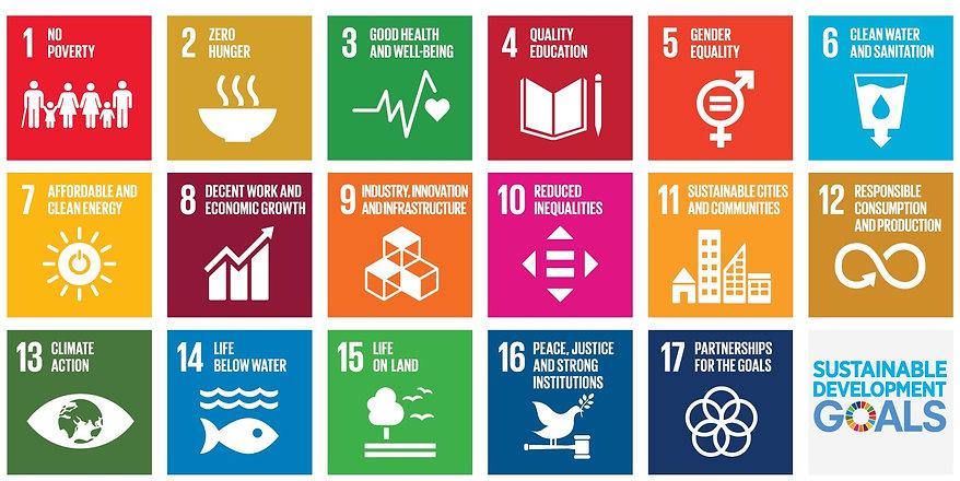 UN_SDG_poster_snipped.jpg