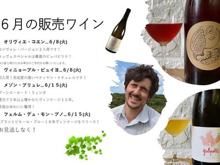 6月の新着ワインの販売スケジュール。