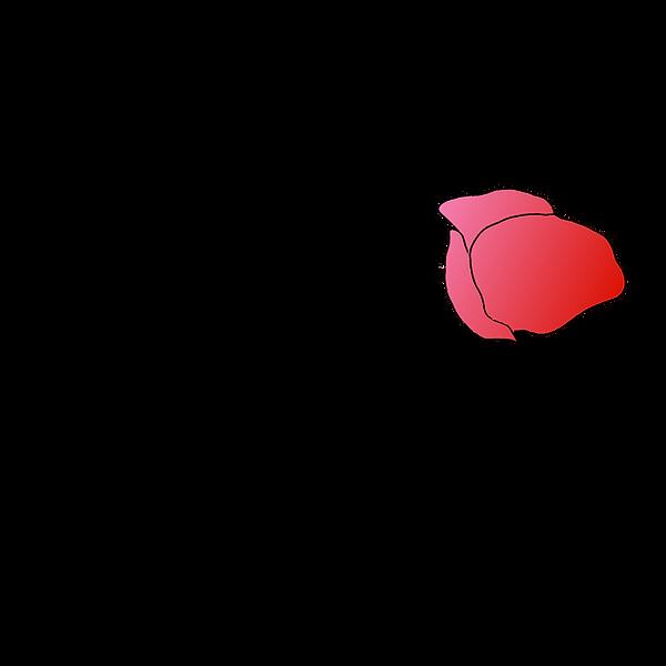 Janie_Logo_1000px.png