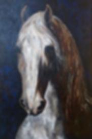 Gray Horse.jpg