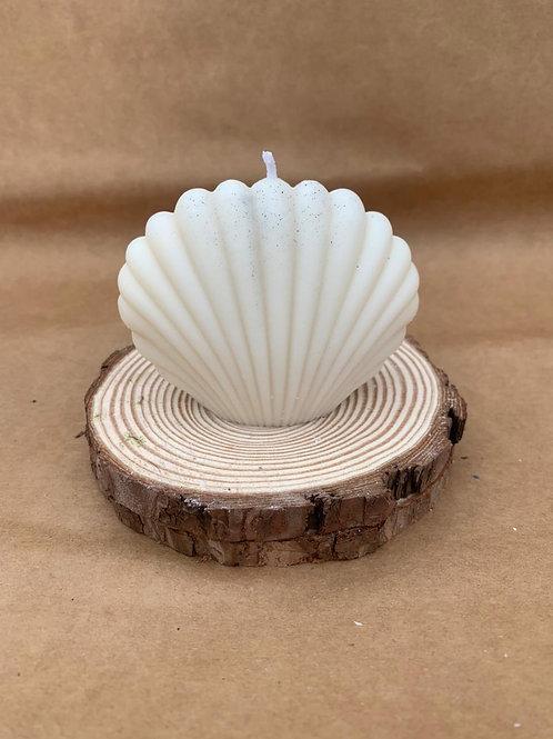 Cordelia Shell Candle