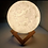 Thumbnail: Moon Lamps