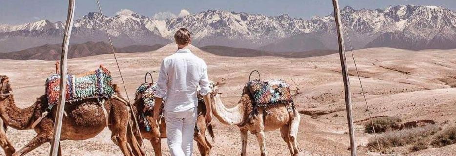 Morocco%20Camals_edited