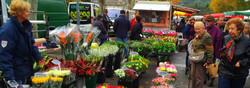 Provence Flower Market_edited