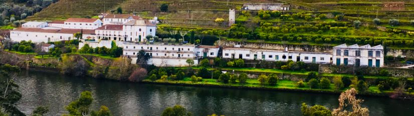 Douro River Valley Strip