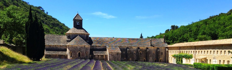 Provence Lavendar_edited_edited