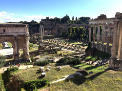 The Forum, Rome, Ialy