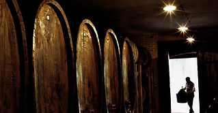 Piedmont Winery.jpg