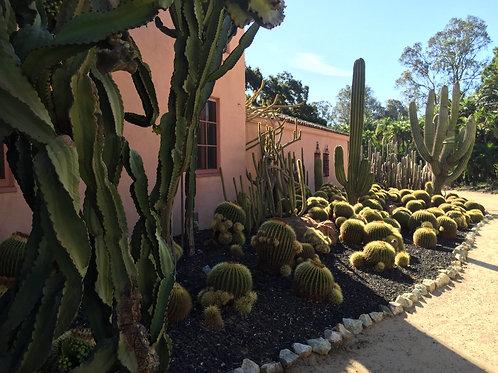Pre-Trip - Santa Barbara