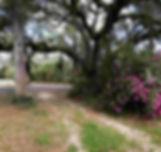1603 wix_edited.jpg