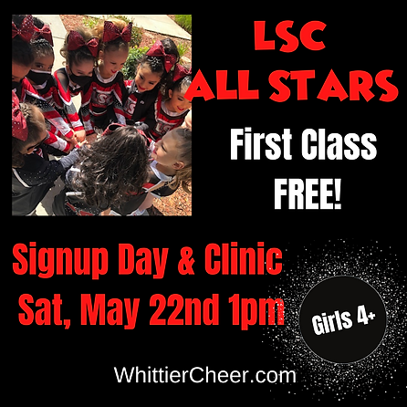 All Star Cheer (4).png