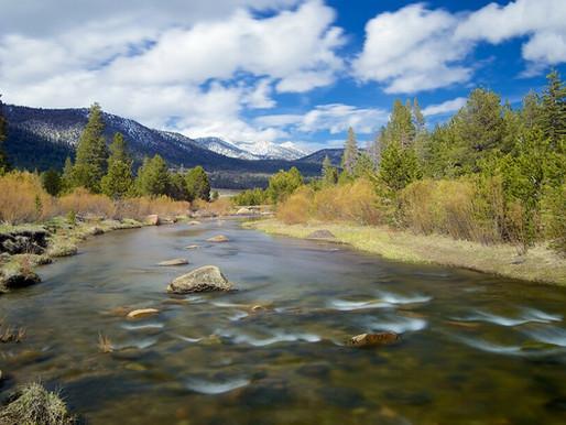 The California Crest Trail
