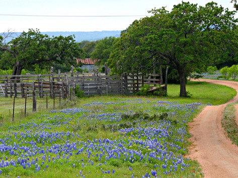 Texas Hill Country Tour