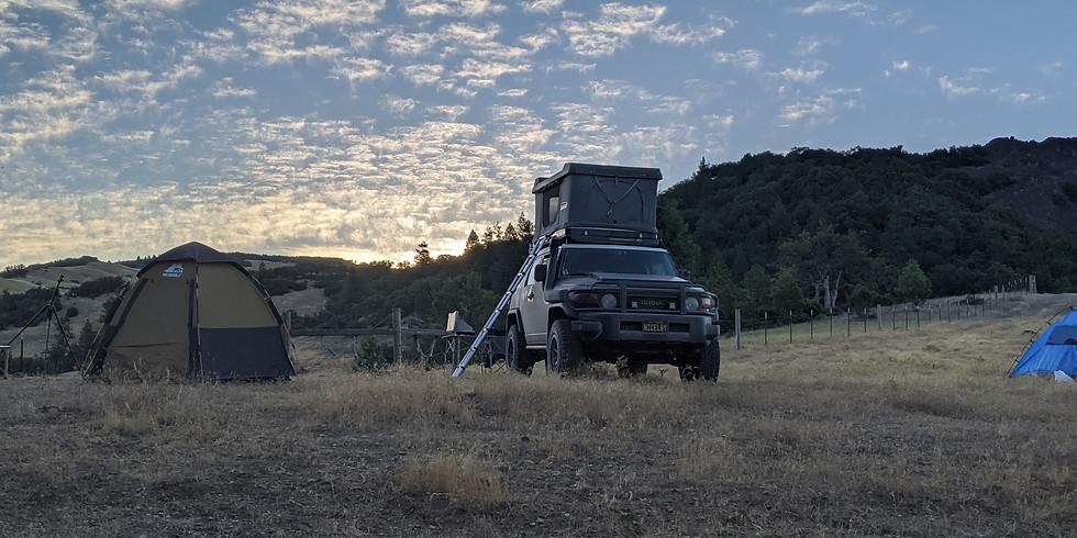 Mendocino Stargazing Safari