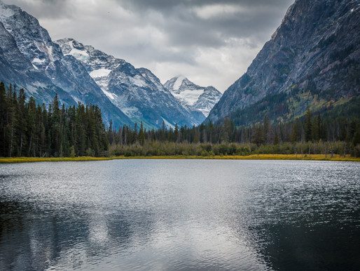Coming Soon: British Columbia Backcountry Discovery Route