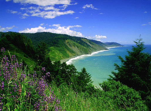 Lost Coast Overland Trail