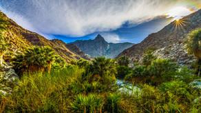 Oases of Baja Trail