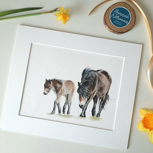 'BY YOUR SIDE' Exmoor Pony and foal Giclee print