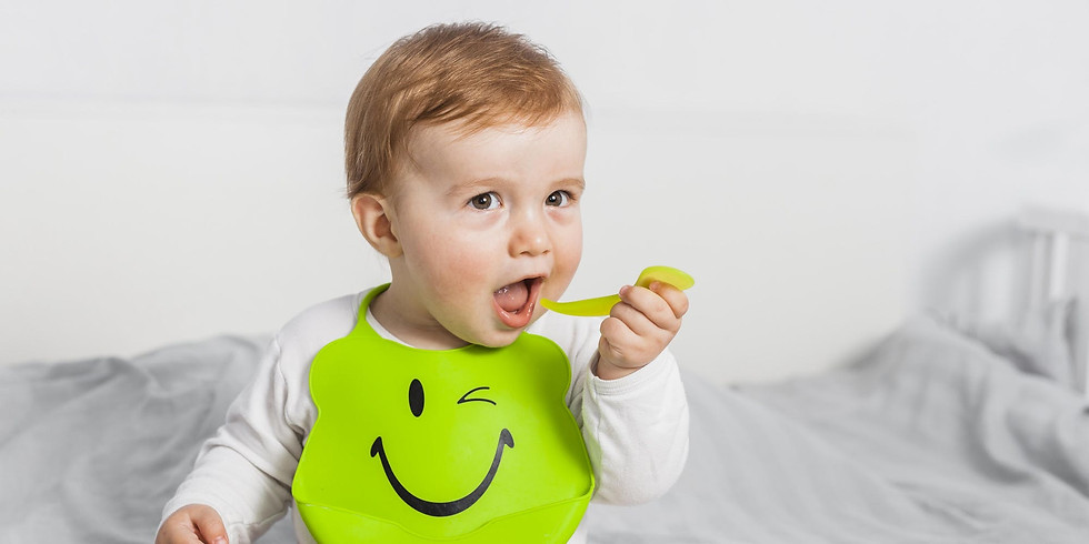 Baby Weaning Workshop with Seed Nutrition