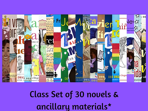 30 Novels & Ancillary Materials