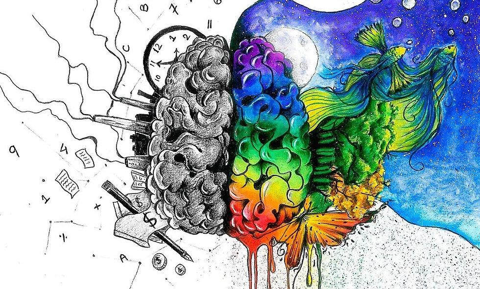 An Introduction to Your Brain