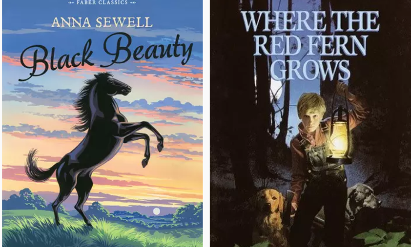Black Beauty and Where the Red Fern Grows book covers literature online class literature homeschool curriculum online classes