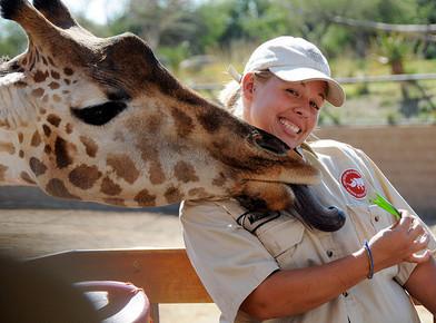 2013-06-24-zookeeper-curator.jpg