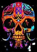 new skull plain t shirt black website 72 png.png