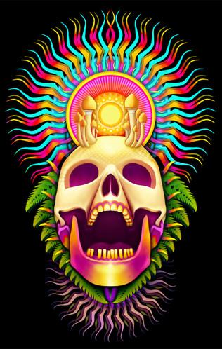 Mushroom Death mask  Acrylic, mixed media, digital (2020)