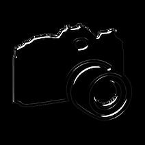 Platinum Camera.png