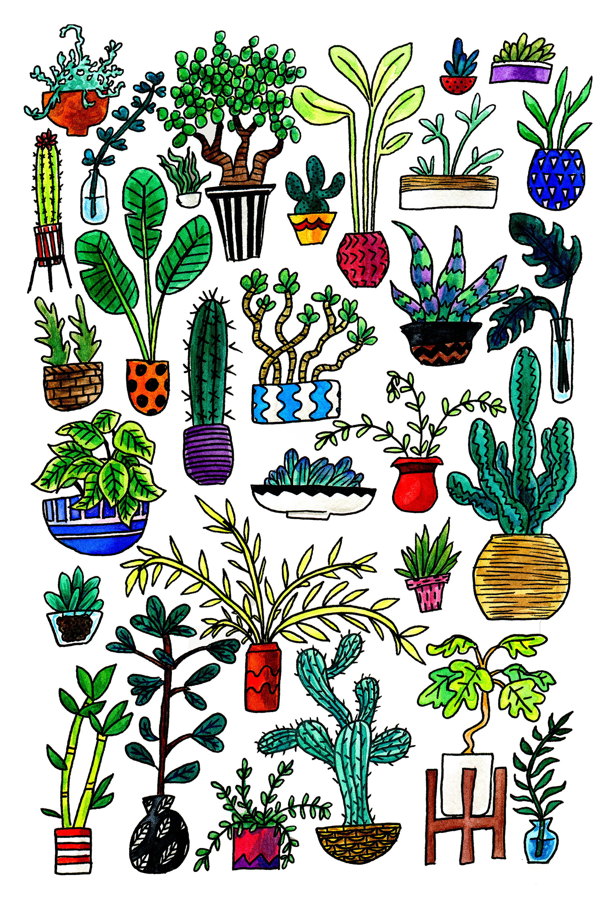 All the Plants, 2017