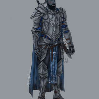 Agorak the Paladin Commission.png
