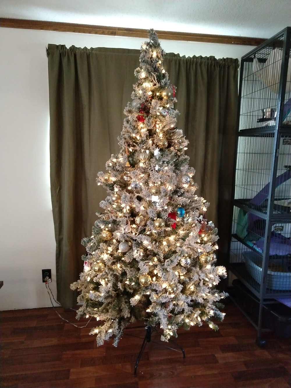 Christmas tree and pets