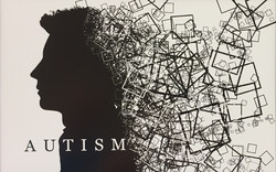 Autism is not so B & W