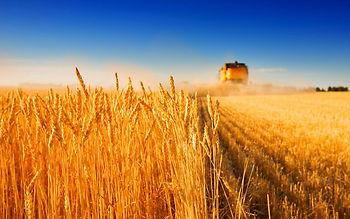 Agriculture Modern Republic