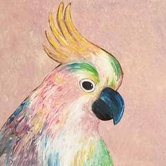 Cockatoo - Acrylic painting, year 5 students