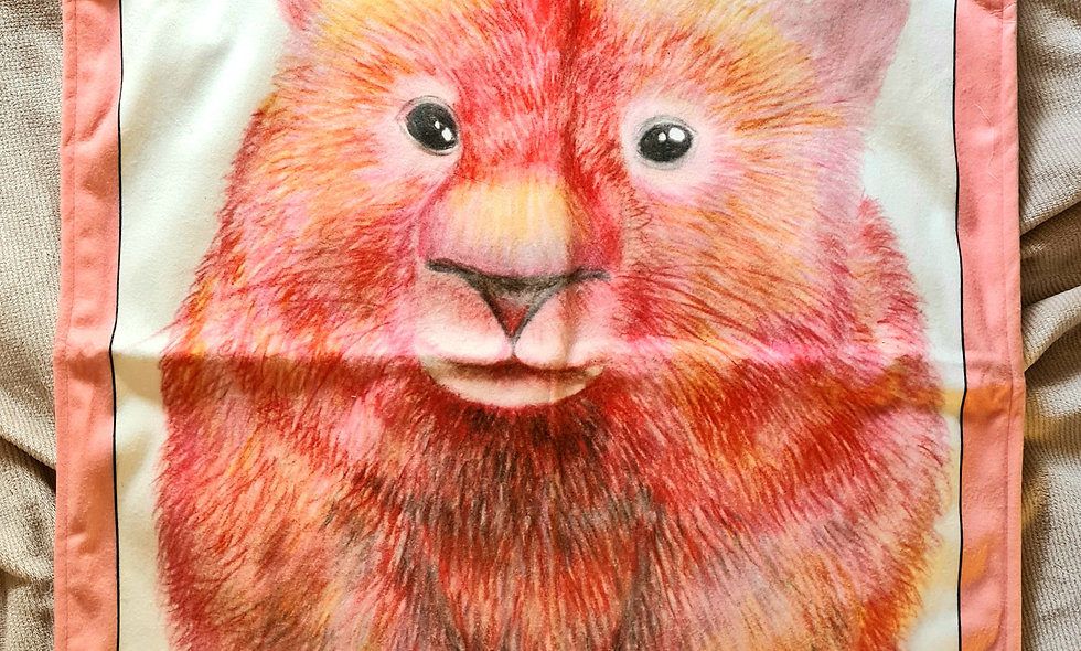 Wombat Baby Blanket