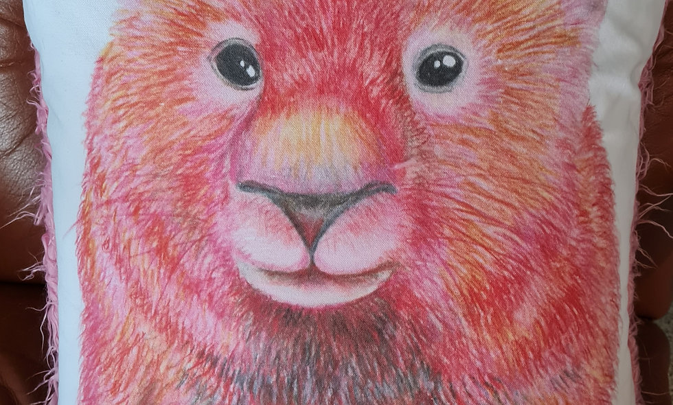 Fuzzy Wombat Cushion