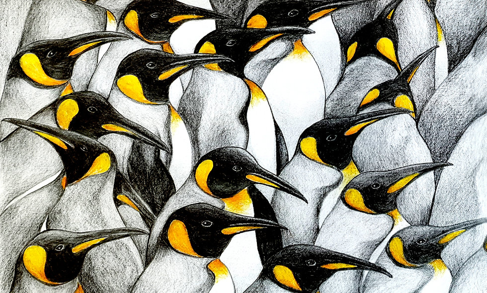 Mess of Penguins