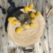 natural timber rounds.JPG