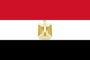 Flag_of_Egypt.svg.png