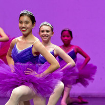 Virginia Dance Festival 30