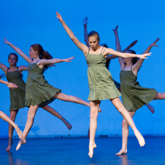 Virginia Dance Festival 20