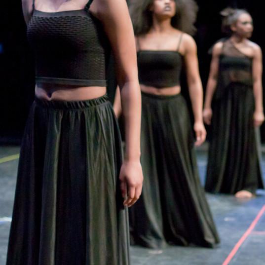 Virginia Dance Festival 28