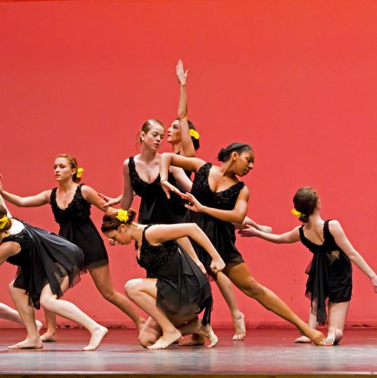 Virginia Dance Festival 23