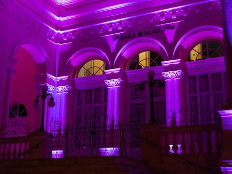 Câmara de Curitiba celebra Dia da Mulher com sessão solene nesta quarta