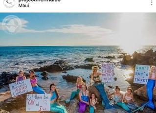 מה הקשר בין בנות ים לאיכות הסביבה?