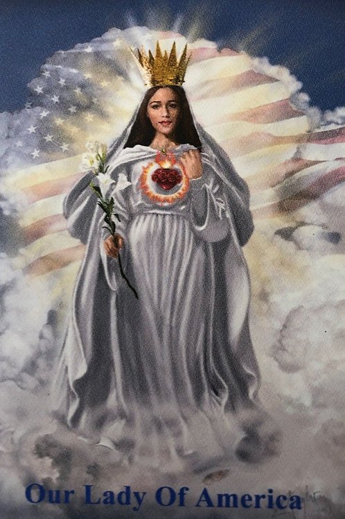 """Our Lady of America with Flag  4"""" x 6"""" Car Magnet"""