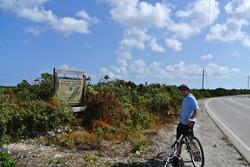 Middle Caicos biking
